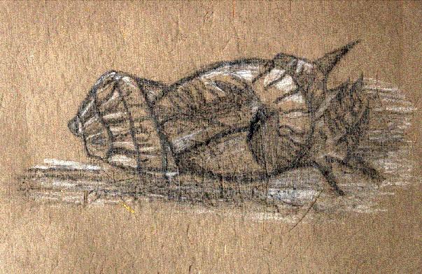 Die Muschel von Alexander Rave (2001)